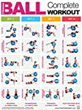 Fitness Ball Complete Workout - Full Body Laminated Poster / Chart - Core - Chest - Legs - Shoulders & Back - Build Muscle, Tone & Tighten - Fitness Ball Training - 45.72cm X 60.96cm