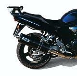 MIVV-Auspuff SUZUKI GSF 1200 BANDIT Bj.01-03 (OVAL,Carbon,Motorrad)