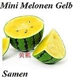20x Mini Melonen Gelb Samen Hingucker Obst Pflanze Rarität essbar