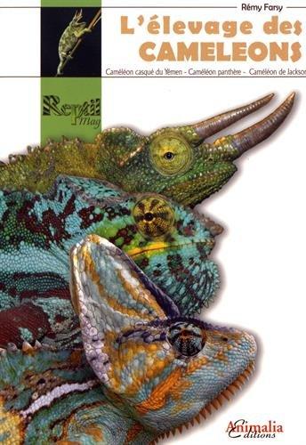 L'élevage des caméléons : Caméléon casque du Yémen, caméléon de Jackson, caméléon panthère par Remy Farsy