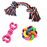 #10: Jainsons Pet Products Dog & Puppy Rubber Chew Toys and Cotton Bone Chew Toy