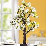 Unbekannt LED-Blütenbaum, Baum mit Zwetschgenblüten und 24 LEDs, An- und Ausschalter, Leuchtbaum Lichterbaum Frühling Deko, weiße Blüten