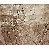 decomonkey Fototapete Steinwand Steine 400x280 cm XXL Design Tapete Fototapeten Vlies Tapeten Vliestapete Wandtapete moderne Wand Schlafzimmer Wohnzimmer Ägypten Pharao Braun FOB0134a84XL