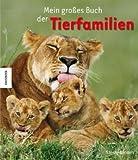 Mein großes Buch der Tierfamilien - David Henry Wilson
