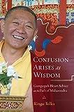 Image de Confusion Arises as Wisdom: Gampopa's Heart Advice on the Path of Mahamudra