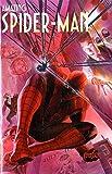 Spider-Man 615 Cover Variant Metallizzata Con T-Shirt Taglia L