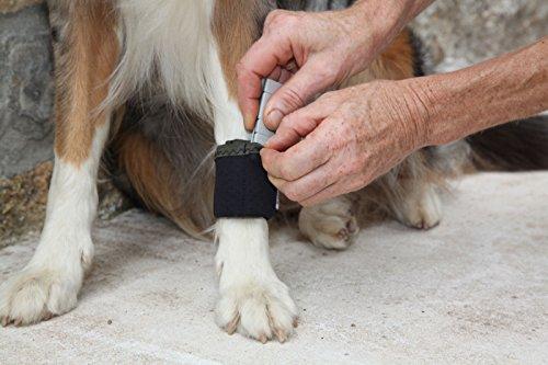 Dog Weight Cuffs 6