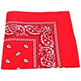 Paisley Pattern 100% Cotton Bandana for Pet Dogs (Red)