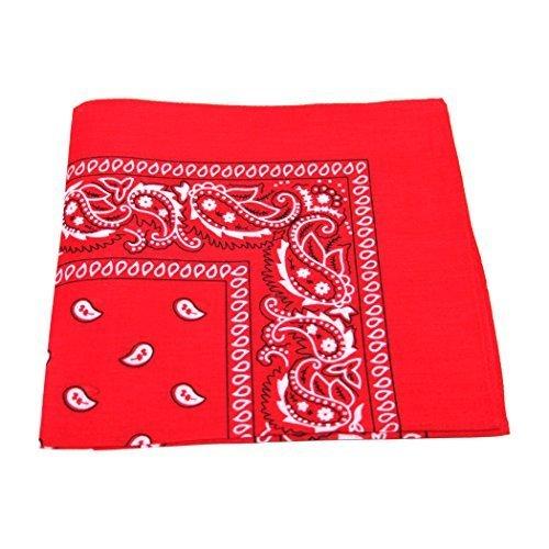 paisley-pattern-100-cotton-bandana-for-pet-dogs-red
