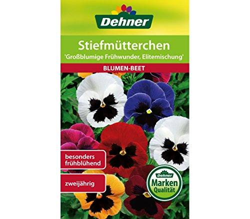 """Dehner Blumen-Saatgut, Stiefmütterchen """"Großblumige Frühwunder, Elitemischung"""", 5er Pack (5 x 0.5 g)"""