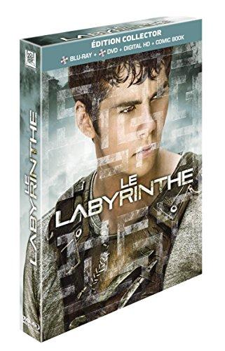 le-labyrinthe-edizione-francia