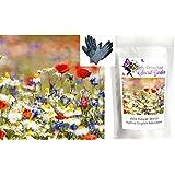 Wild Flower Seeds, Meadow Mix, ONLY FLOWERS - 40 g-Bulk,Bargain