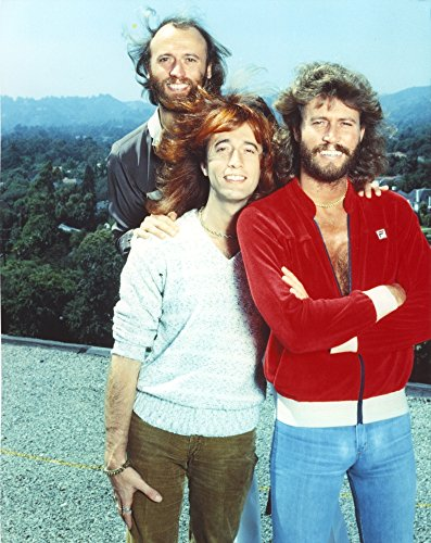 Bee Gees Band Members standing Behind a Mountain Scenery in White Shirt with Brown Pants Red Long Sleeves with Denim Pants Black Suit with White Collar Shirt Photo Print (60,96 x 76,20 cm)