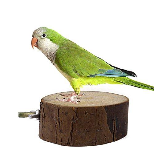 ivebetter Creative Parrot Vogelkäfig Spielzeug Holz Ständer (8–9cm)