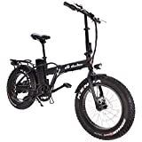 DAS.BIKE Elektro Fat Bike 20