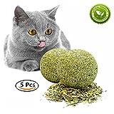 Skisneostype Katzenminze Ball, Katzenspielzeug, Catnip Matatabi Katzenminze Zahnpflege, 100% Natur Unterstützen die Natürliche Zahnpflege für Katzen Jeden Alters (5 Pack)