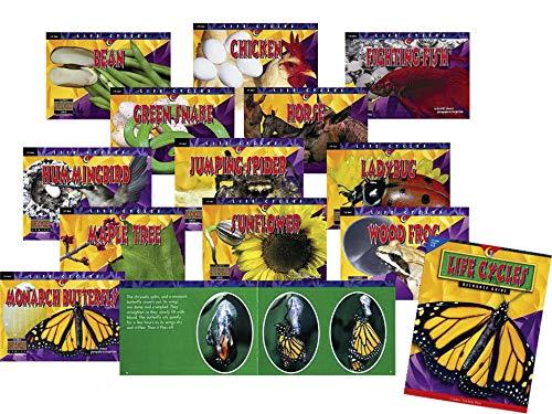 1 Ea Pack (CREATIVE LEHRE PRESS CTP3083 LEBENSZYKLEN Variety Pack 12 B-cher 1 EA. 3059-3070)