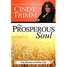 The Prosperous Soul: Your Journey to a Richer Life (English Edition)