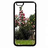 iPhone 6S Plus Case, iPhone 6 Plus Case, roseto