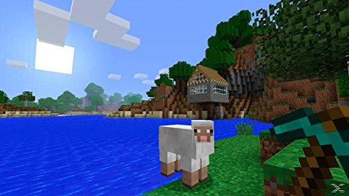 Minecraft - Bild 4