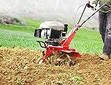 HECHT Benzin-Gartenfräse 746 Motor-Hacke - 7
