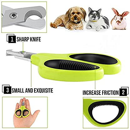 Professional Nail Clippers for Small Animals: Dog, Cat, Rabbit, Bird, Puppy, Kitten - Claw Clipper Trimmer Scissor for… 5