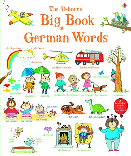 Big Book of German Words par Mairi Mackinnon