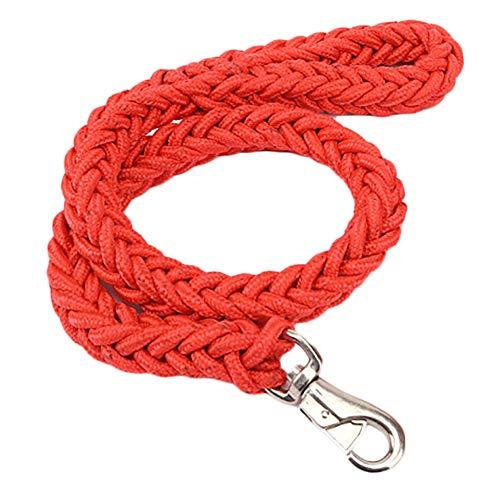 Kentop Hundeleine aus Nylon, für Haustiere, für Hunde, Training, 120 cm 120 * 3.0cm rot -