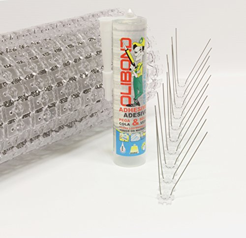 pack-5m-pics-antipigeons-2-rangees-en-acier-inox-tube-silicone-professionnel-transparent-garantie-10