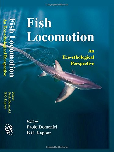 Eco-Ethological Perspective (Shark Fishing Gear)