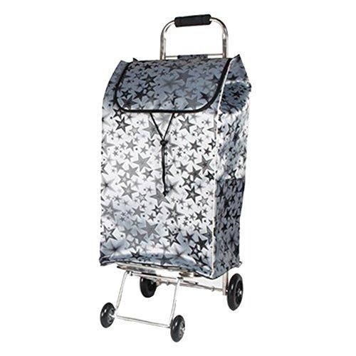 Anhängerwagen Laufkatze Laufkatze-Edelstahl-Falten-Gepäckwagen-Ziehen-Waren-Einkaufswagen-Ausgangswasser-Abziehvorrichtung Portable Handauto Handwagen (Farbe : Style-4)