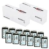 ANSMANN 2x Akkubox für 6 E-Block 9V Aufbewahrungs/Schutz/Transport + (12 Stück) 9V Akkus Typ 300 (min. 270mAh)