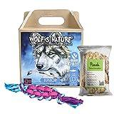 Wolf's Nature Getreidefreies Trockenfutter für Welpen aus Norwegen Junior Fjord-Lachs (1,3 kg + Snack + Spielzeug)