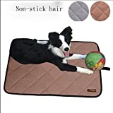 SMACO-Tapis de compagnie Tapis de chien Été Étanche Bite Dog Pad Été Pet Cool Pad, l, coffee
