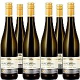Weingut Mees Kreuznacher Paradies Riesling Spätlese Trocken 2018 Prämiert Weißwein Nahe Deutschland Wein Winzer Weinpaket (6 x 750 ml) 100% Riesling