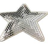 (5 Stück) 5 Sterne geformt Paillette Gestickte Applikationen nähen oder bügeln auf Patches Silber