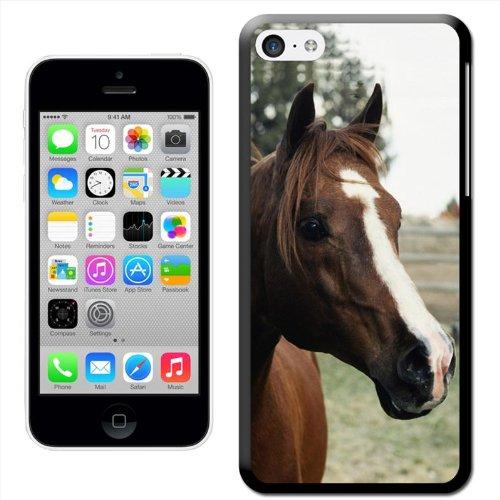 Fancy a snuggle Coque arrière rigide clipsable pour Apple iPhone Motif tête de cheval, plastique, Brown Horse With White Stripe, iPhone 5/5s