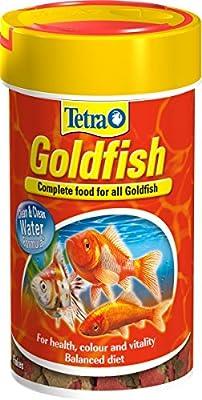 TetraFin Goldfish Flake Food