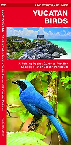 Yucatan Birds: A Folding Pocket Guide to Familiar Species of the Yucatan Peninsula (Pocket Naturalist Guide) por James Kavanagh