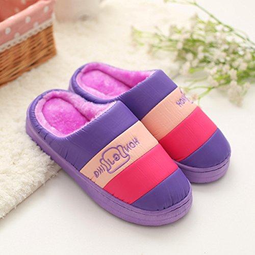 DogHaccd pantofole,Il cotone pantofole inverno la metà delle coppie con spesso rimanere a casa, resistente allacqua anti-slittamento peluche caldo pantofole La porpora1