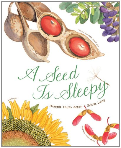 a-seed-is-sleepy
