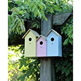 Deluxe 3 in 1 Coloured Wooden Hanging Bird House Garden Feeder Tit Robin