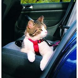 Arnés y Cinturón seguridad Gatos, 20-50 cm, Rojo