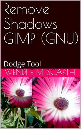 Remove Shadows GIMP (GNU): Dodge Tool (GIMP Made Easy Book 182) (English Edition)