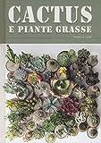 Cactus e piante grasse