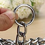Kungfu Mall Pet Strong Steel Metal Training Pet Choker Chain Collar (L) 12