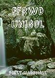 Ffrwd unigol (Welsh Edition)