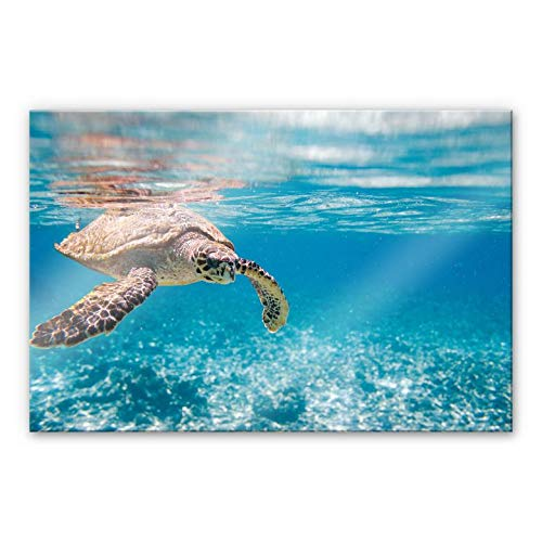Acrylglasbild Schildkröte auf Reisen Meer Ozean schwimmen Sonne Meerestier Wasser Wall-Art - 100x70cm