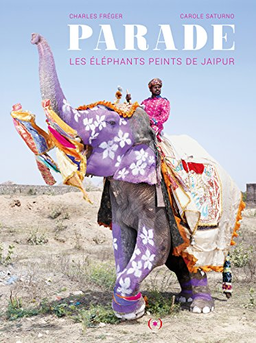 Parade: Les lphants peints de Jaipur