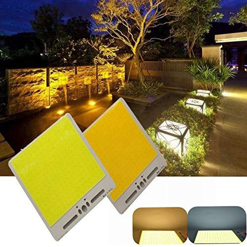 JCHUNL 50 Watt warmweiß/weiß High Power COB Led Chip für DIY Flutlicht Scheinwerfer Unten Licht DC12-14V New Hot (Color : Warm White)